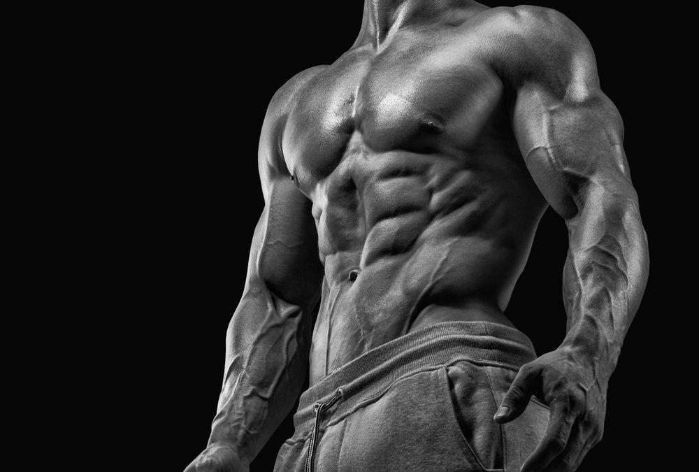ernhrungsplan muskelaufbau - Ernahrungsplan Muskelaufbau Beispiel