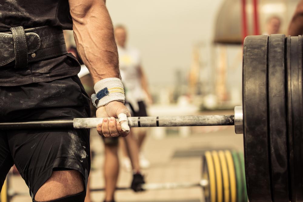 Muskeln aufbauen Ernährung